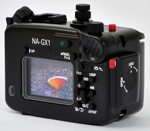 Подводная съемка с Panasonic Lumix DMC-GX1