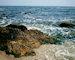 Черное море в Одессе - лучший летний курорт