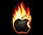 Закончилось разбирательство с возгоранием iPhone
