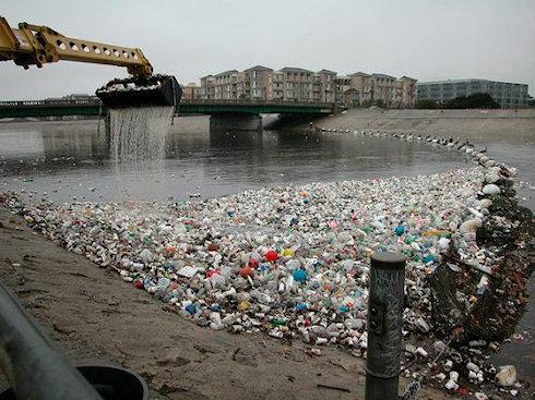 В Лос-Анджелесе запрещено использование пластиковых пакетов