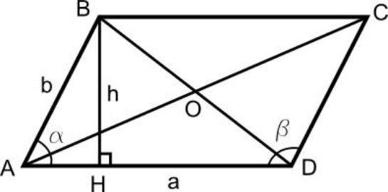 Характеристика важности практической работы учащихся или что мы знаем про параллелограмм?