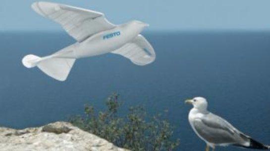 Ученые разработали чайку-робота