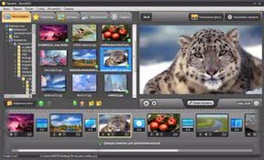 Как эффективно рекламировать бизнес по созданию видео