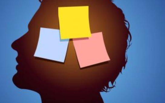 Ученые пришли к выводу, что интернет отнимает память человека
