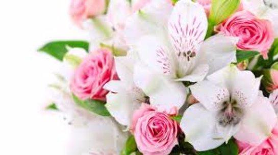 Если вдруг захотелось цветов…
