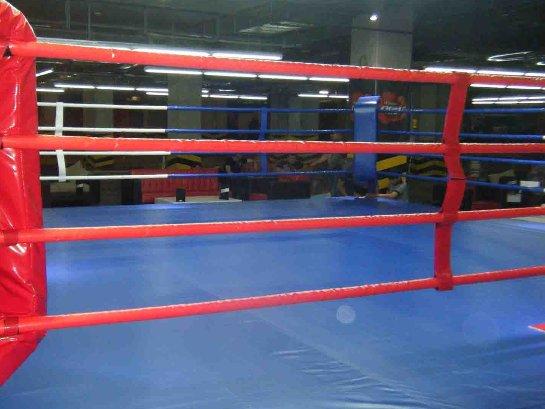 Что нужно, чтобы организовать свой бокс-ринг?