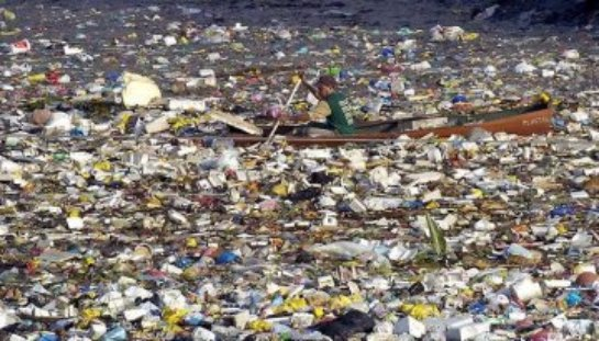 Ученые предлагают интересный способ избавиться от мусора