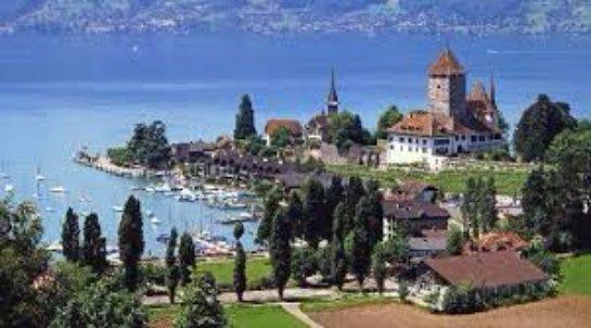 Услуга переезда в Швейцарии