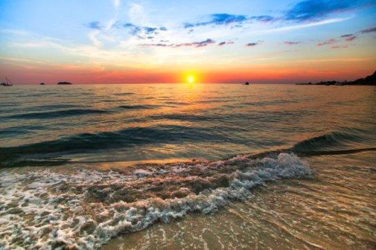 Океаны заселяют таинственные формы жизни – ученые