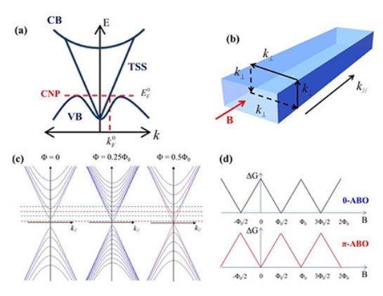 Запрещённая зона в нанолентах ТИ включается магнитным полем