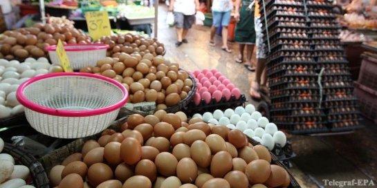Яйца — питание для здоровья?
