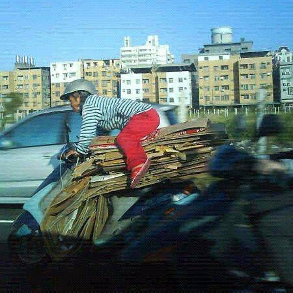 Кого только не увидишь на дорогах… ФОТО