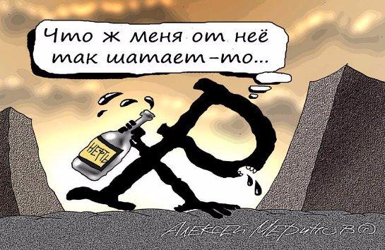 Сеть «взорвала» карикатура о падении российского рубля