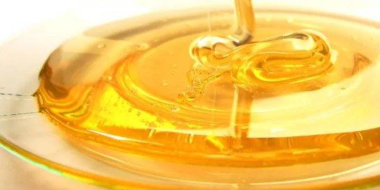 Мед — живой бальзам для тела и души