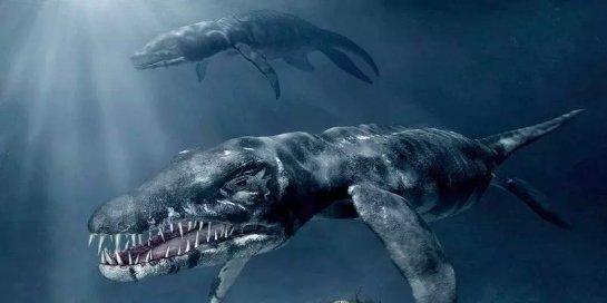 Ученые обнаружили окаменелые останки доисторического животного