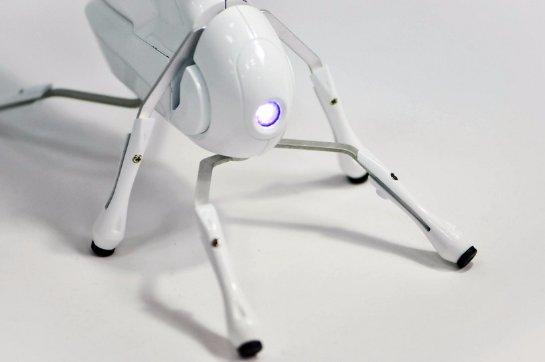 Создан робот, которого может собрать даже ребенок