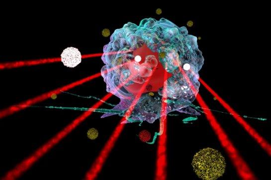 Российские биологи создали наночастицы, способные лечить рак