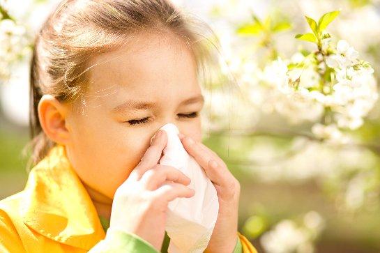 Ученые выяснили, откуда взялась аллергия