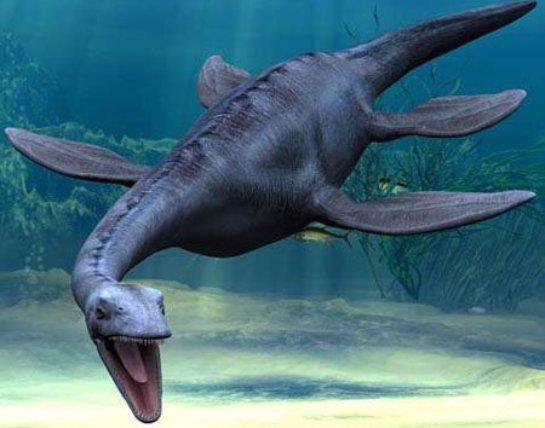 На Шпицбергене нашли останки морского динозавра