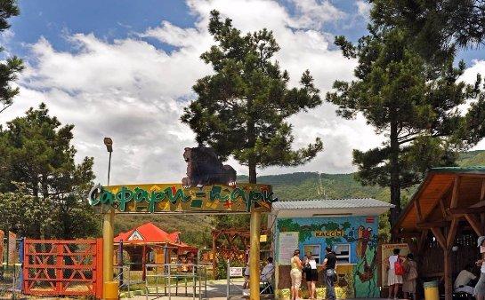 Сафари парк в Геленджик: развлечения для всей семьи и экзотические животные