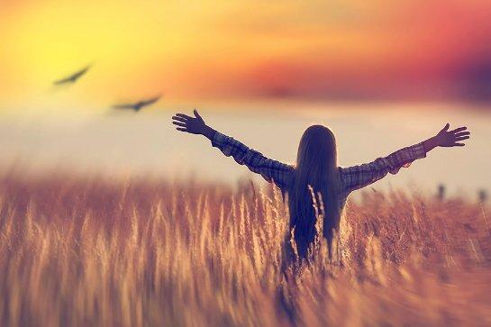 Ученые выяснили, существует ли в реальности такое понятие, как «свобода»