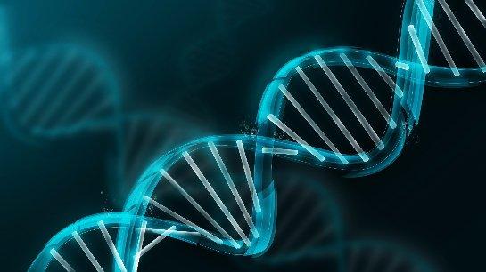 Германские ученые работают на методом защиты ДНК человека от повреждений