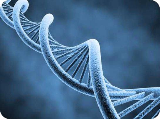 Якутские ученые нашли новое генетическое заболевание