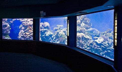 MoLab – станция для изучения океанских глубин