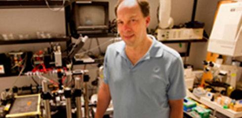 Расшифрован геном сперматозоида