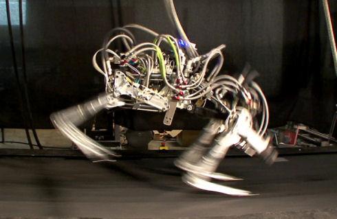 Робот-гепард развил скорость в 45,5 км/ч