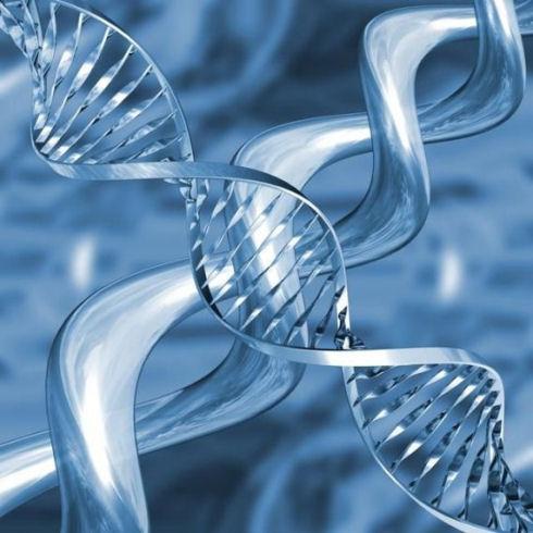 Ученые синтезировали молекулы ДНК и РНК