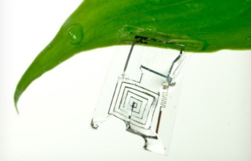 В США созданы растворимые микросхемы