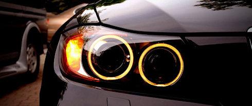 Светлячки помогут в создании сверхмощных светодиодов