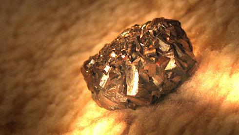 Бактерии Cupriavidus metallidurans умеют добывать золото