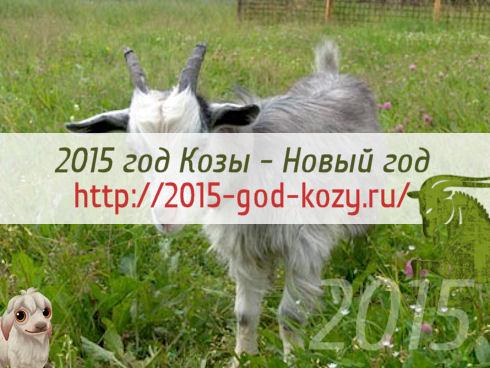 2015 год Козы — Новый год