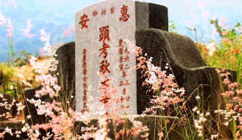 Игромания вынудила молодого китайца грабить могилы