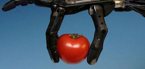 Парализованная женщина управляла роботом с помощью мысли