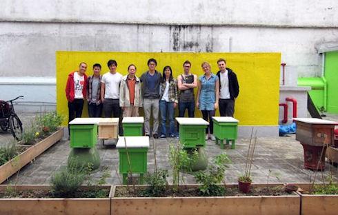 Китайские города могут позеленеть