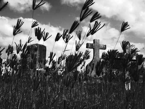 Энергонезависимая камера Sun & Cloud Digital