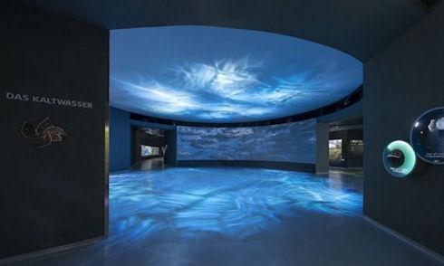 Blue Planet – крупнейший аквариум Европы открылся в Дании