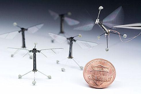 Робот-муха заменит человека в труднодоступных местах нашей планеты