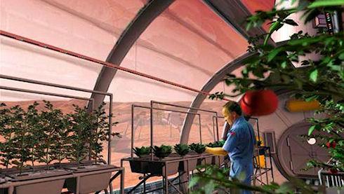 Миссия на Марс: продовольственная программа