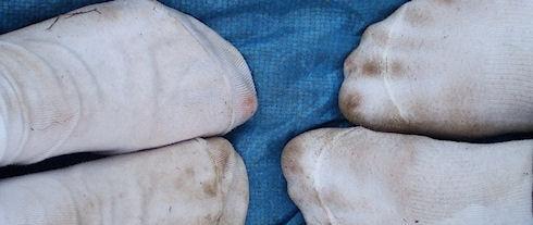 Грязные носки помогут в борьбе с малярийными комарами