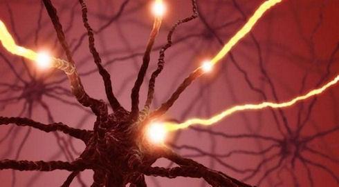 Нейроморфные чипы лягут в основу системы искусственного интеллекта