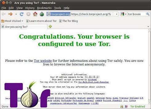 В браузере Tor выявлена уязвимость критического уровня