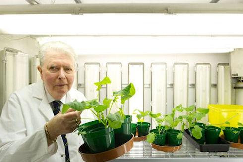 Технология N-Fix позволит растениям усваивать атмосферный азот