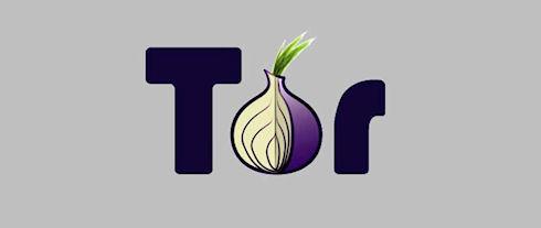 Ботнеты и порносайты лидируют в сети Tor