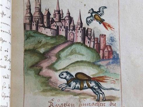 Кошки и птицы были реактивным оружием в XVI веке