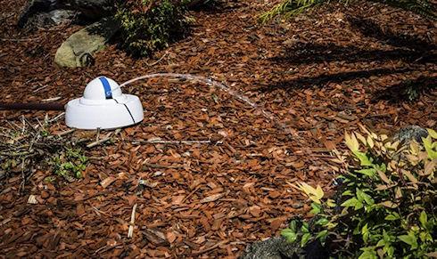 Droplet – «умный» полив растений с экономией 90% воды