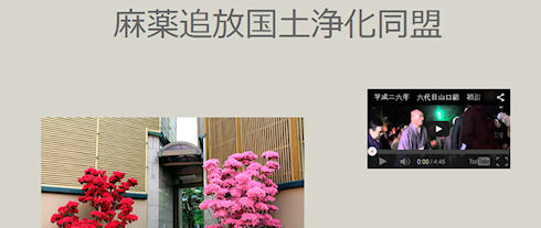 У японской якудза появился собственный веб-сайт
